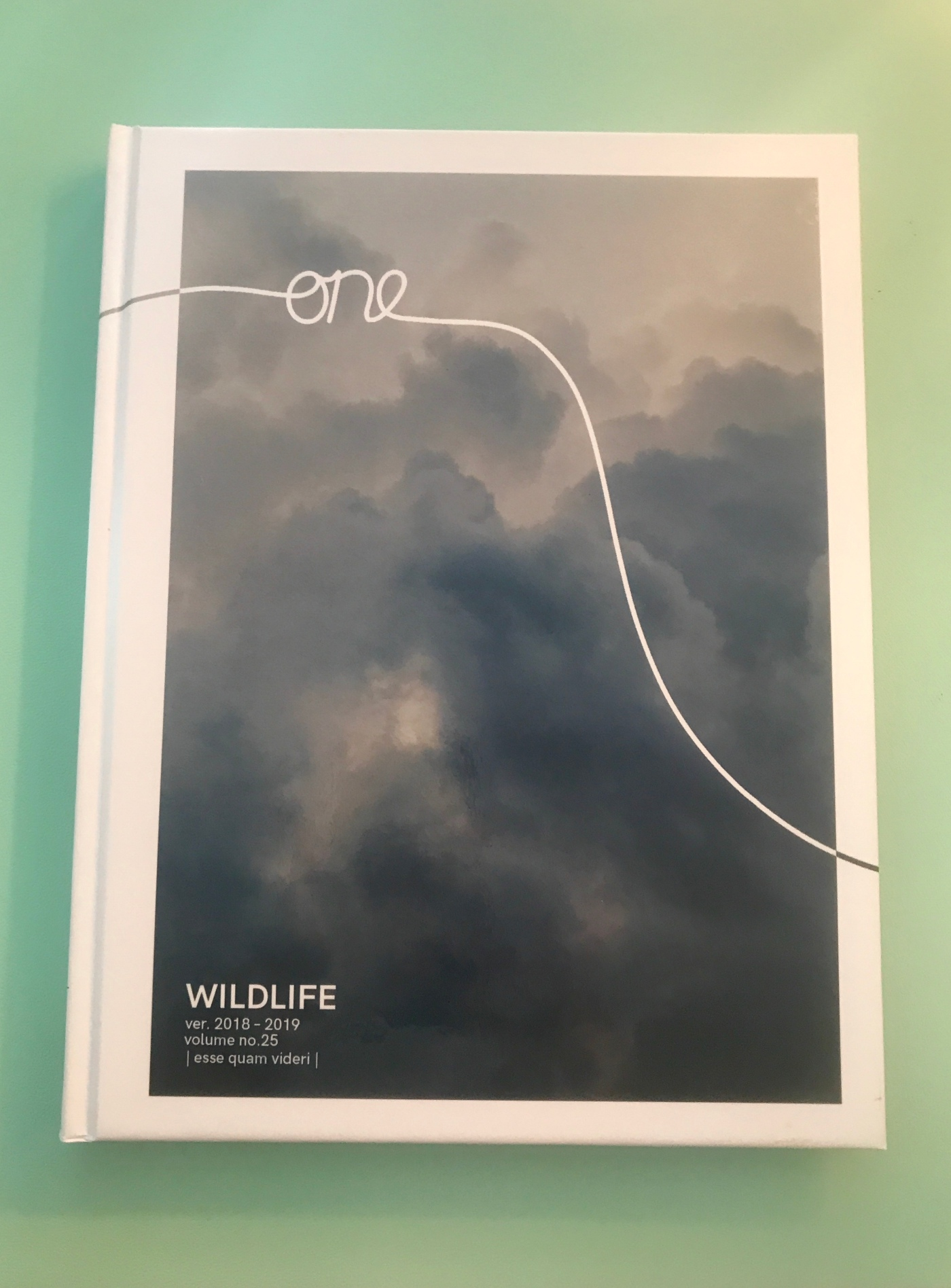 Cover of 2019 Wildlife